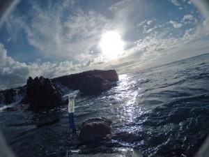 Snorkleratrocks